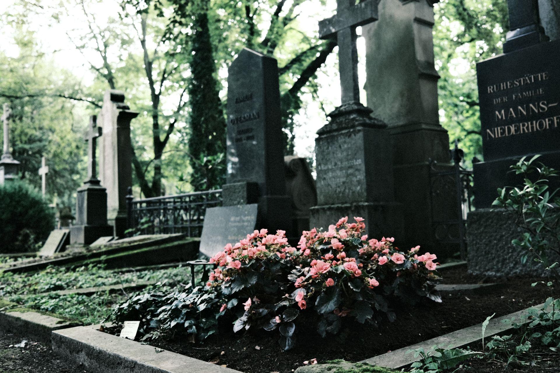 Alter Friedhof Bonn Juli 2021